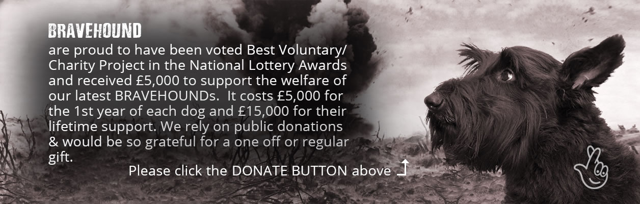 BRAVEHOUND wins National Lottery Award. Dog on a battlefield with explosion
