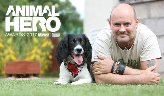 Animal Hero Awards, Paul Wilkie and dog Irma lying in the garden - links to Irish Independent newspaper article