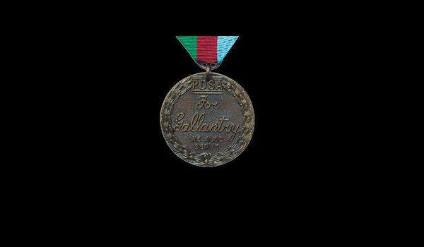Dickin's medal for animal bravery