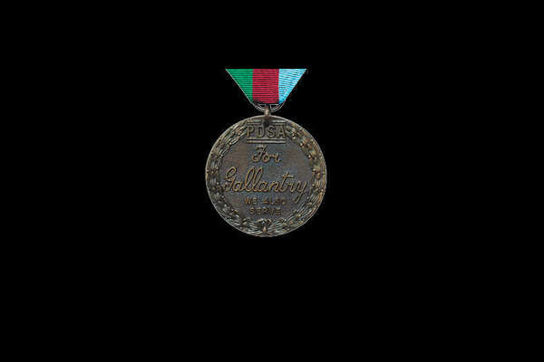 Dickin's medal for animal bravery