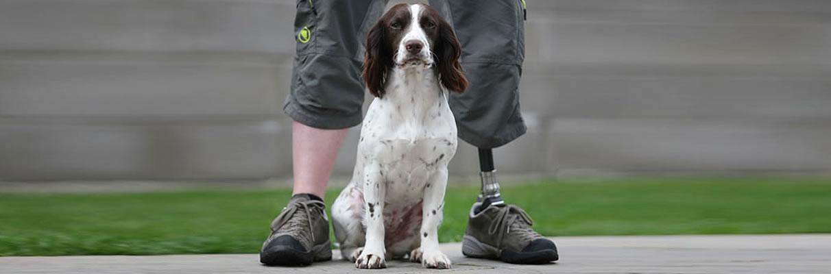 dog sits between legs of man with one prosthetic foot