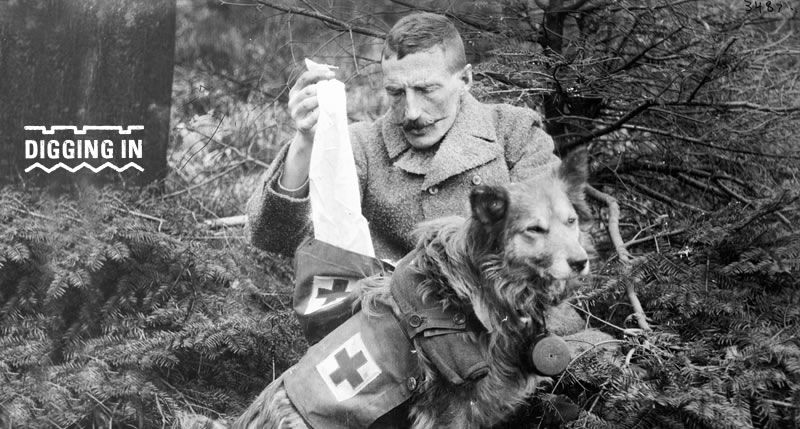 CREATURE COMRADES – ANIMALS IN WW1