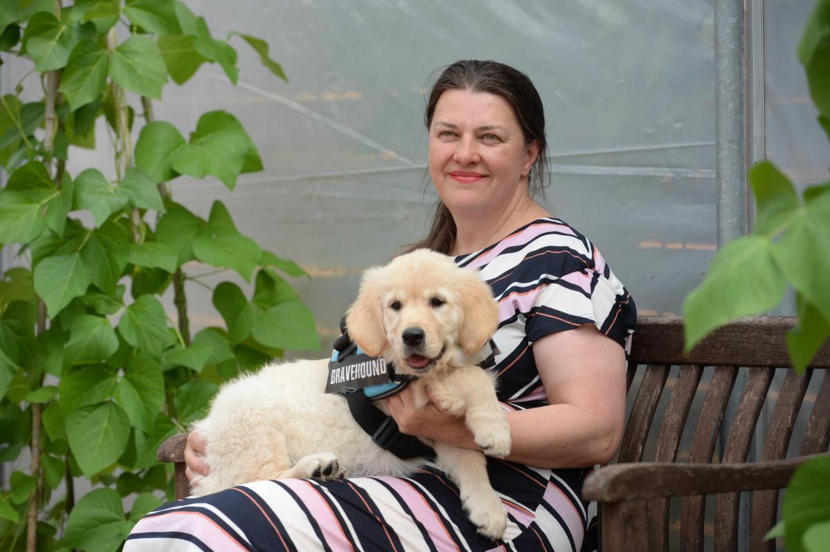 woman with Bravehound puppy dog