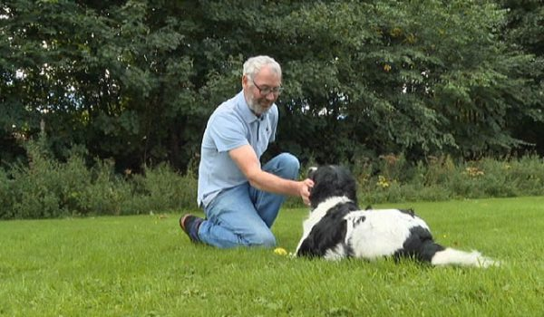 man plays with spaniel dog in park