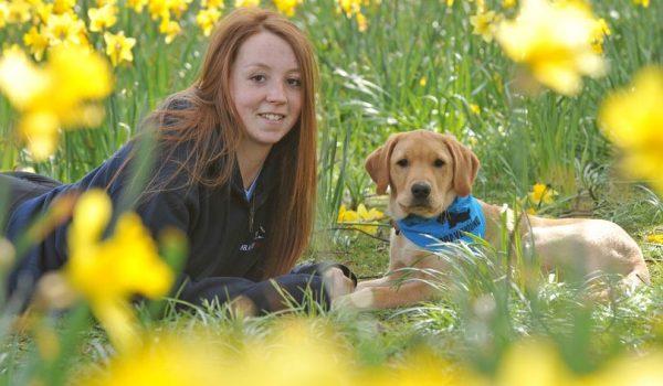 dog and lady